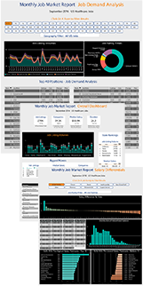 Job Market Intelligence Dashboard Data